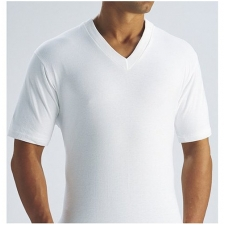 Wholesale Fruit of the Loom V-neck T-Shirts - 24 Packs
