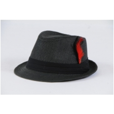 Wholesale Fedora Hats with Feather  435f46e5169