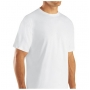 Wholesale Fruit of the Loom Crew Neck T-Shirt - 24 Packs