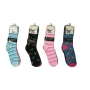 Wholesale Novelty Socks - Women's Crew Socks - 12 Pairs